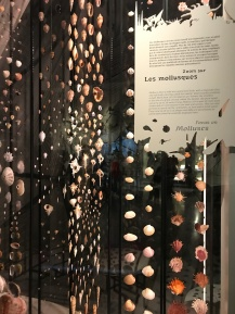 Musée des confluences : Venenum une exposition vivante et passionnante