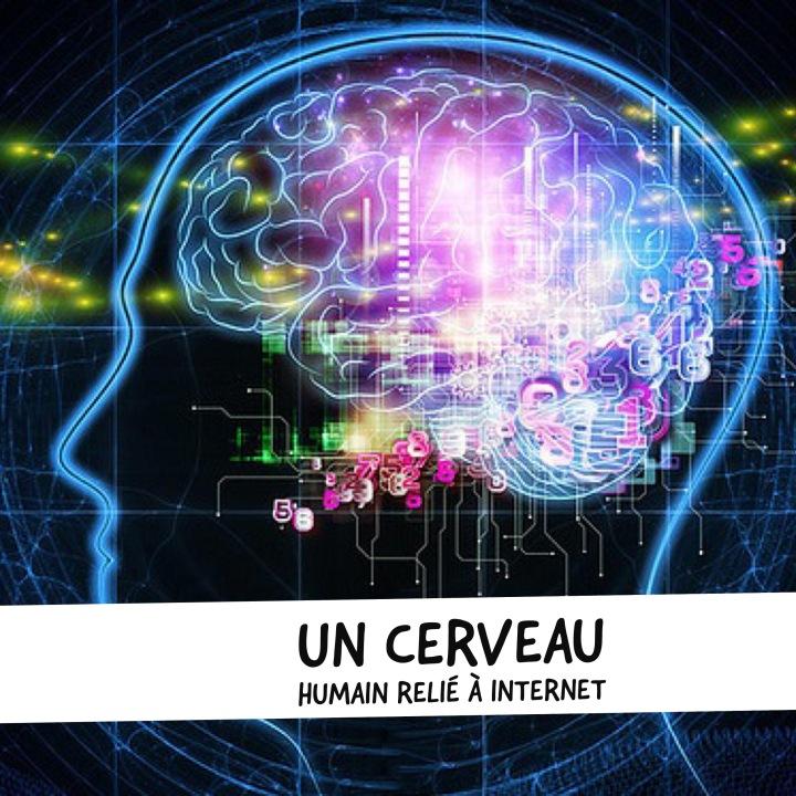 Des chercheurs ont lié un cerveau humain à Internet, unepremière