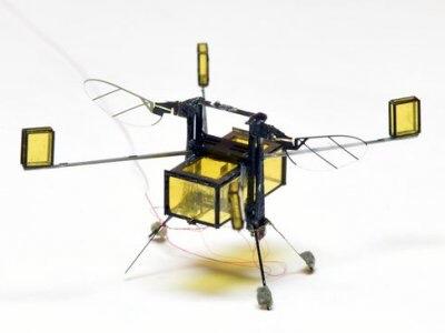 Walmart vient de déposer un brevet pour des abeilles robotiséesautonomes