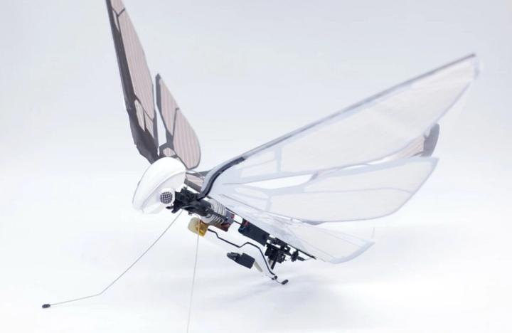 MetaFly, le drone qui vole comme unpapillon